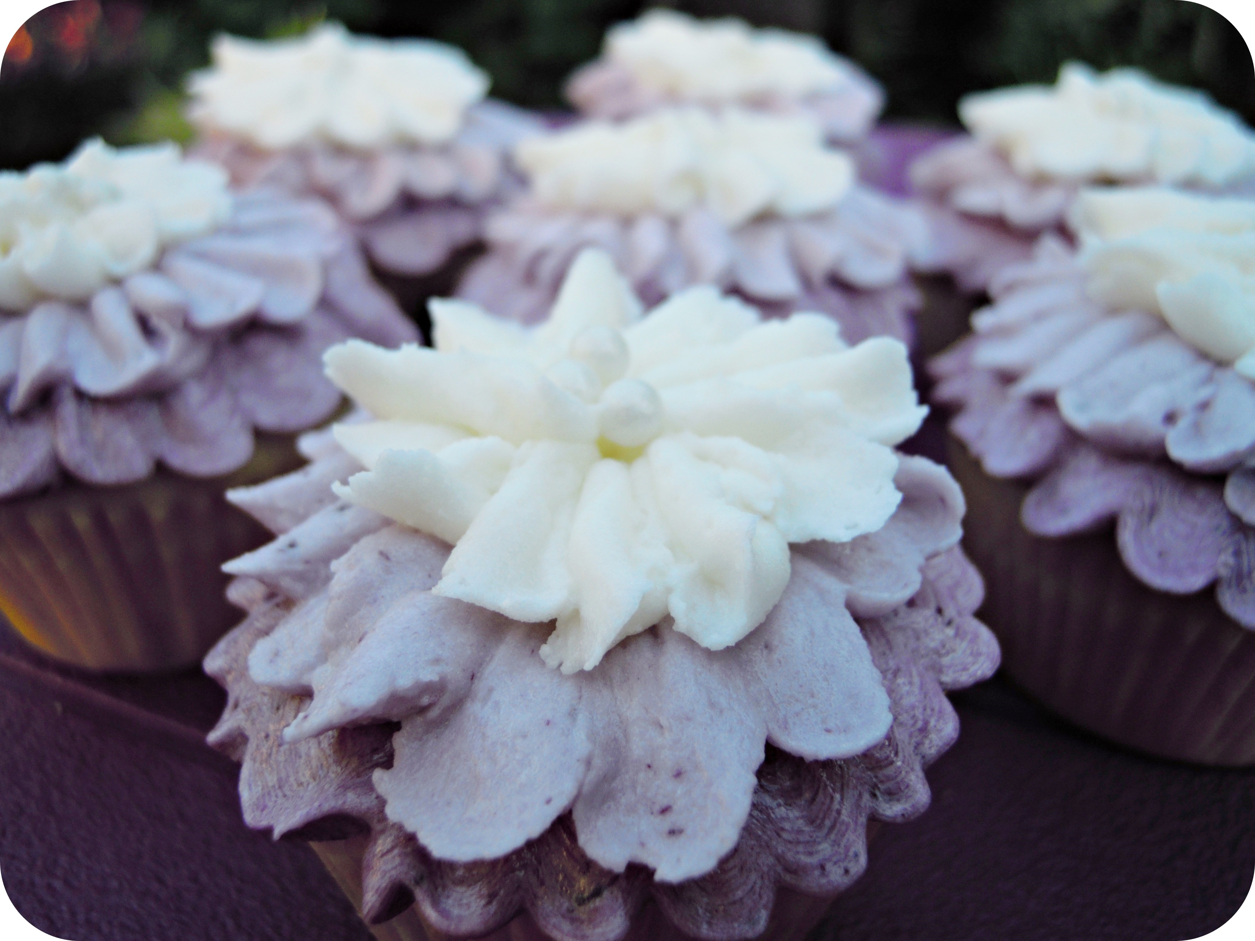 Mini Lemon-Blueberry Cupcakes with Blueberry Buttercream |